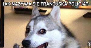 W sumie to polska też