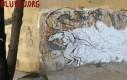 Graffiti ewolucyjne