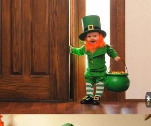 Sześciomiesięczny Leprechaun broi...