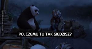 Pandy nie są zbyt bystre