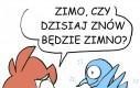Polska zima w pigułce