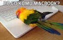 Po co komu MacBook?