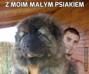 Z moim małym psiakiem