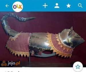 Kot w butach i pełnej zbroi