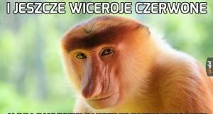Janusz Na Weselu Jejapl