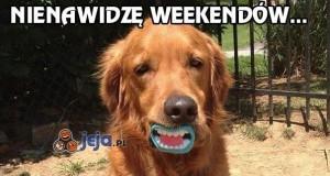 Nienawidzę weekendów...