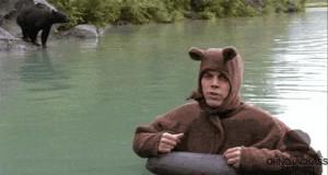 Zobacz, niedźwiadek!