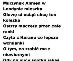 Murzynek Ahmed