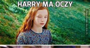Harry ma oczy