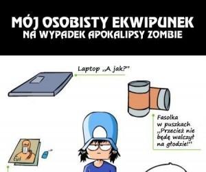 Zawodowy zabójca zombie