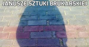 Janusze sztuki brukarskiej