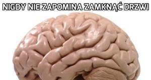 Mózgu, nie męcz mnie już
