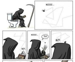 Śmierć muchy
