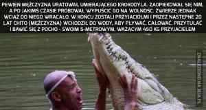 Niezwykła przyjaźń człowieka i krokodyla