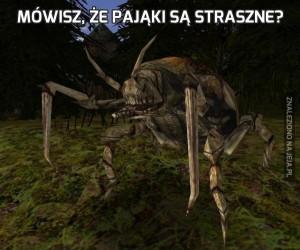 Mówisz, że pająki są straszne?