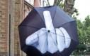 Wulgarny parasol