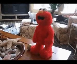 Elmo ma dość spamu w komentarzach