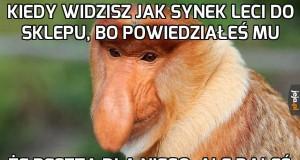 Cwany Janusz