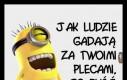 Haha, ale śmieszne, Janusz, chodź, patrz się!