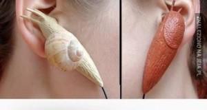 Ślimacze słuchawki