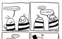 Powrót niezręcznej pszczoły