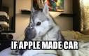 Windows w Apple?