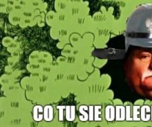 Losowy obrazek z Wałęsą