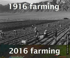 Farmienie kiedyś i dziś