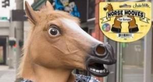 Bo głowa konia to za mało!