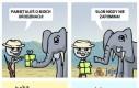 Słonie nie zapominają