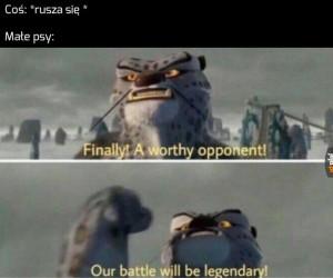 Do ataku!