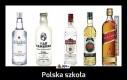 Polska szkoła