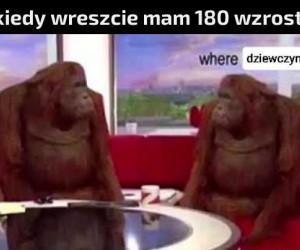 Gdzie one są?