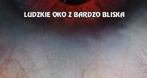 Ludzkie oko z bardzo bliska