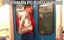 Spiderman po roku w Rosji