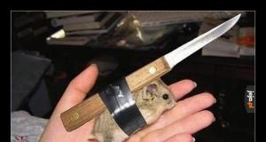 Wyciekły zdjęcia nowej broni biologicznej ISIS