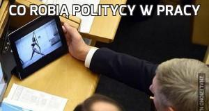 Co robią politycy w pracy