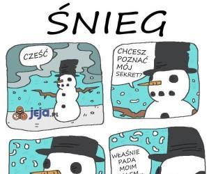 Mroczna tajemnica śniegu...