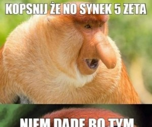 Janusz zawsze Januszem