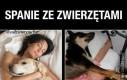 Spanie ze zwierzętami