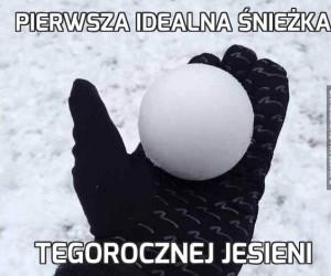 Pierwsza idealna śnieżka