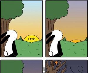 Lato, lato... i puf!