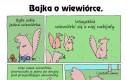 Bajka o wiewiórce