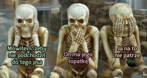 Ciężki żywot szkieleta