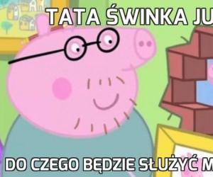 Tata świnka już wie