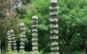 Lemurza stonoga