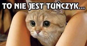 To nie jest tuńczyk...