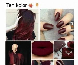 Najlepszy kolor