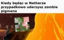 Gracze Minecrafta zrozumieją