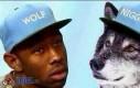 Wilk i murzyn
